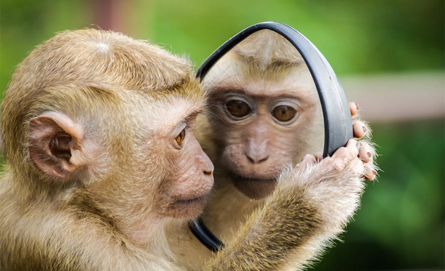 「仕上がり・・・こんな感じっす!」鏡クイっ←これなんて返してる?