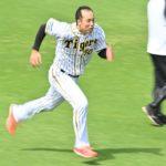 【ハゲ速報】阪神青柳さん、限界突破(画像あり)
