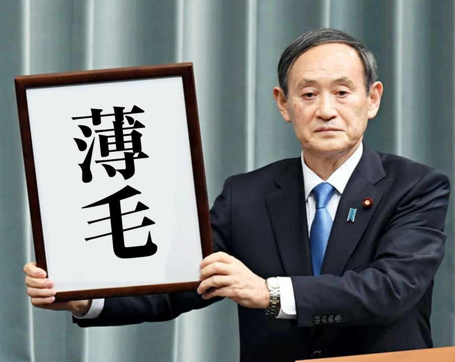 菅総理って有能だし髪型もカッコいいよな?