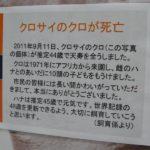 【訃報】クロちゃん急死(画像あり)
