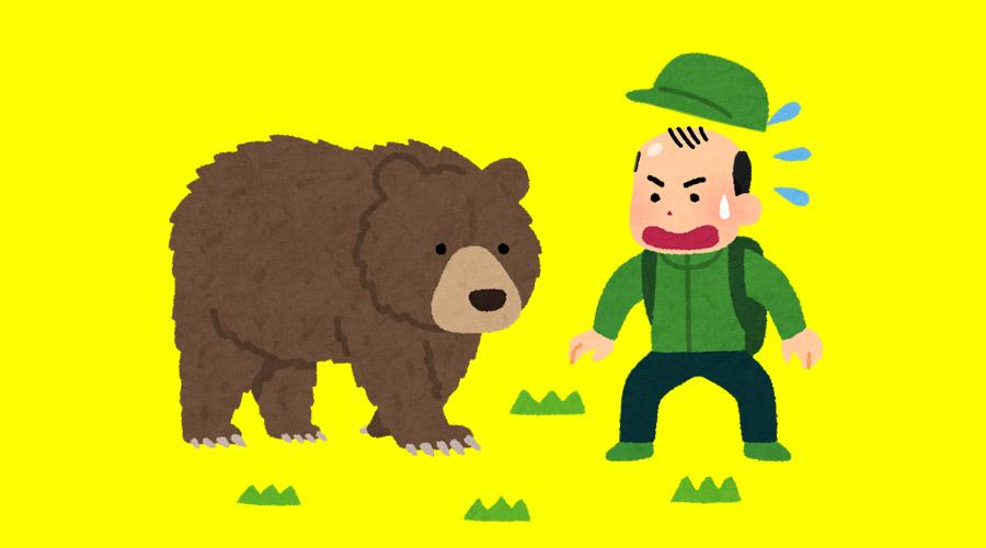 【超画像】クマの毛全部毟ったった結果www