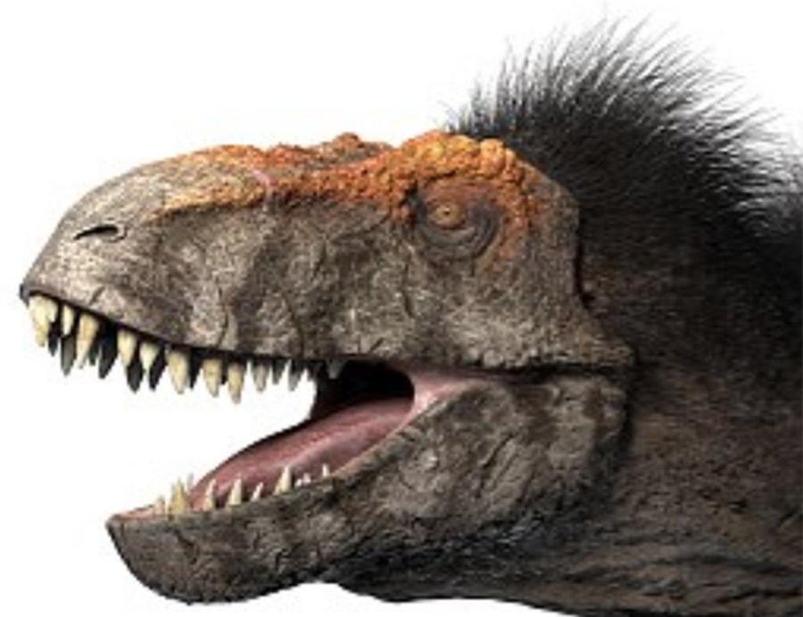 【画像】研究者「すまんwやっぱ恐竜には羽毛生えてなかったわww」